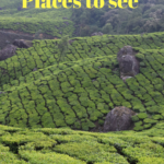 Munnar, Places to visit