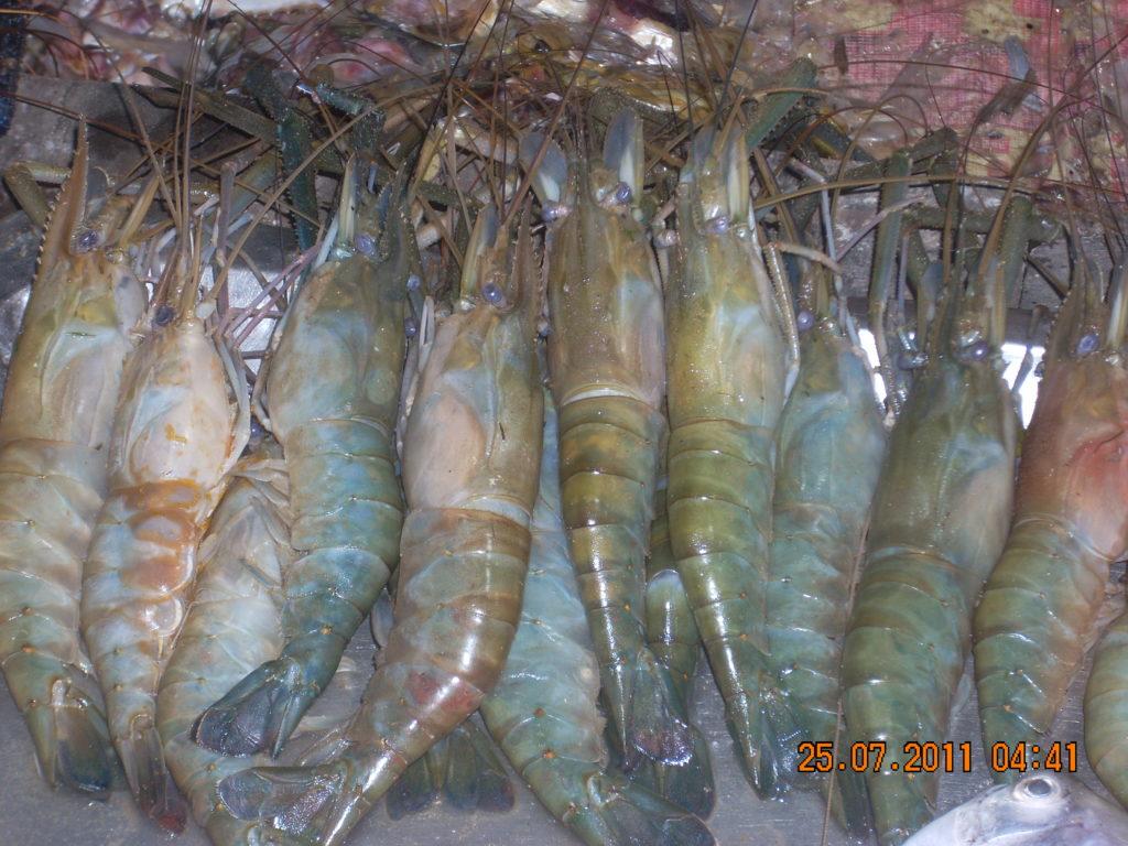 Street Food near Puri Beach Road