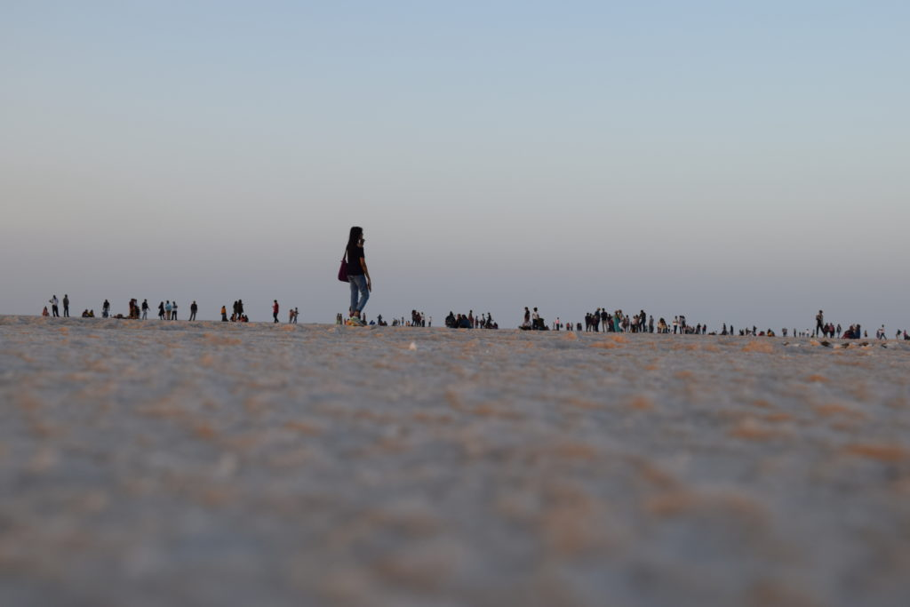 Rann of Kutch Festival-All you need to know